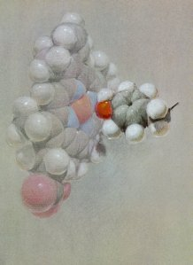 Pastel drawing of a hemoglobin molecule by Roger Hayward, 1964.