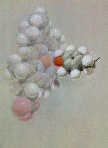 Pastel drawing of a hemoglobin molecule by Roger Hayward, 1964.