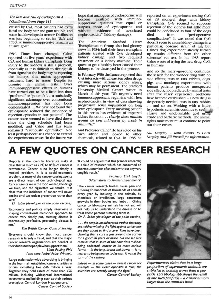 Quotes On Research Clarifying Three Widespread Quotes  Paulingblog