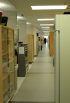 View of the Linus Pauling Institute laboratory space, a vast area built with collaboration in mind.