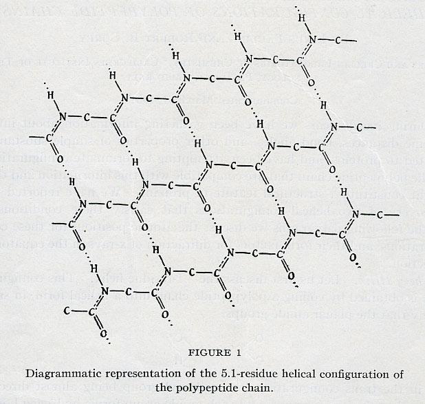 term paper proposal structure