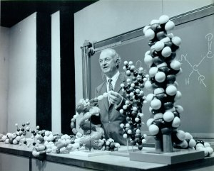 """Pauling lecturing with the """"fish model"""" (foreground) that he used to demonstrate chirality, ca. 1960s."""