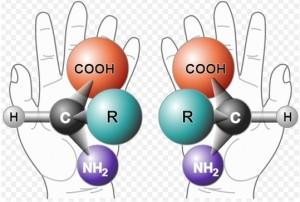 alanine enantiomers