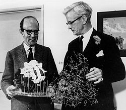 Perutz and John Kendrew, 1962. Image credit: Nobel Foundation.