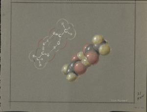 "The Double Molecules of Acetic Acid. Pastel drawing by Roger Hayward.  As with all of the pastels used as illustrations with this blog post, the Acetic Acid pastel shown here was not the final version published in ""The Architecture of Molecules."""