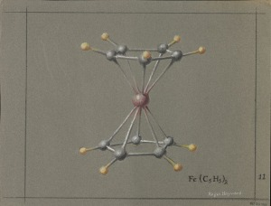 The Ferrocene Molecule.