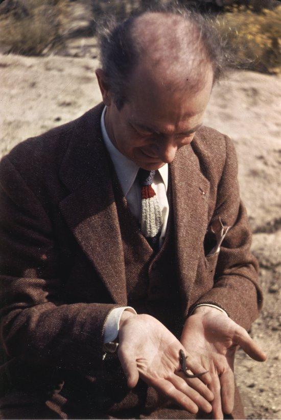 1948i.031-550w