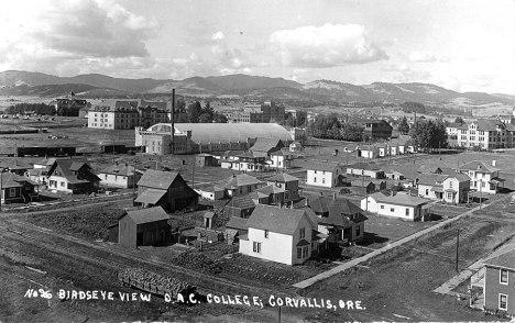 oac-1911